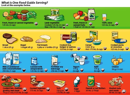 the canadian food guide